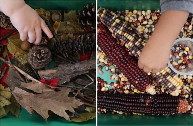 children under 2 engaged in Autumn sensory exploration