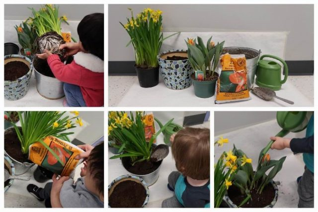Child planting and watering